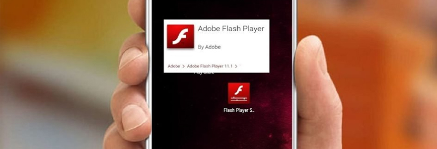 Application flash player