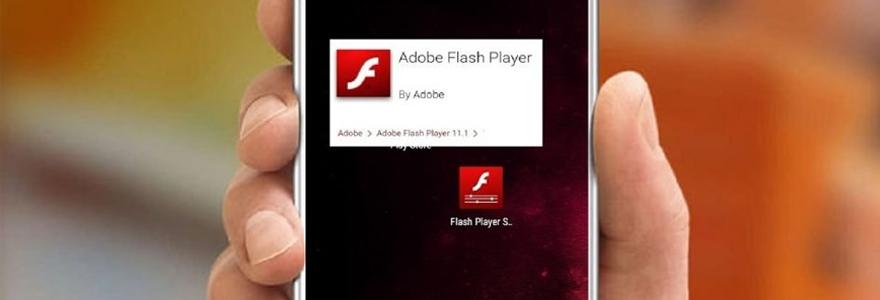 Application flash player