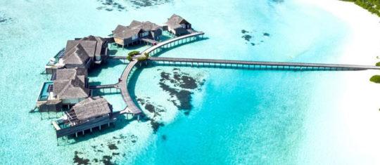Relations sexuelles, rencontre aux Maldives